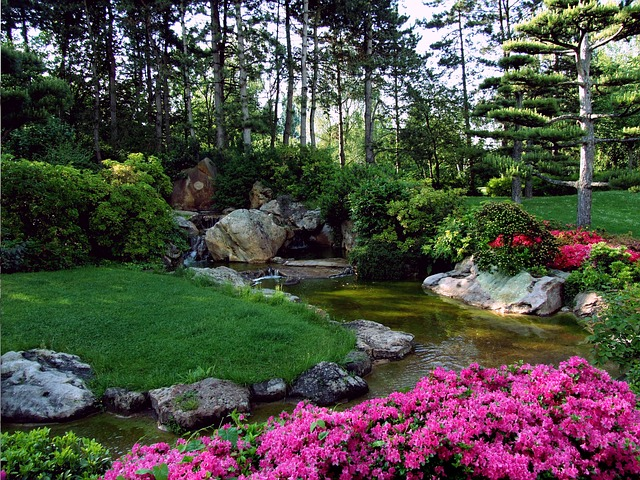 potůček na zahradě